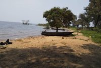 4 acres of lake shore land for sale in Bwerenga at 250m per acre