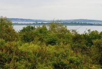 50x100ft plots of land for sale in Zziba with lake view at 22m each
