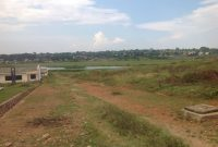 Land for sale in Nkumba with lake view